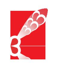 logo_centro-studi