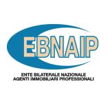 Ebnaip logo